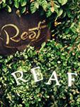 reaf_pn